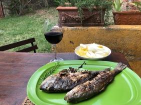 Orada i brancin sa roštilja