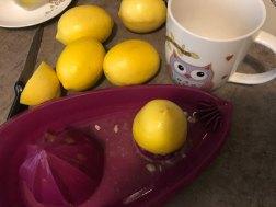 Iscedite limun